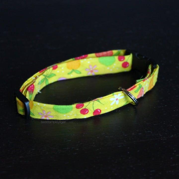 Easy DIY Cat Collar (Minimal Sewing)