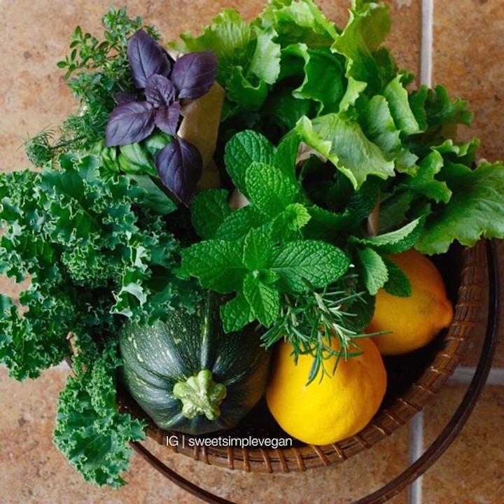 Lettuce, herbs, lemons, zucchini and kale.