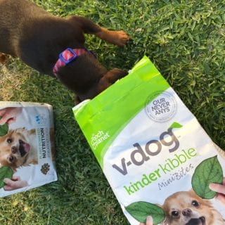 V-Dog Vegan Dog Food Giveaway!