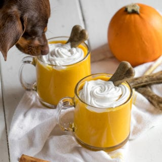Puppy Spice Latte | Dog-Friendly Fall Smoothie {vegan} + Giveaway!