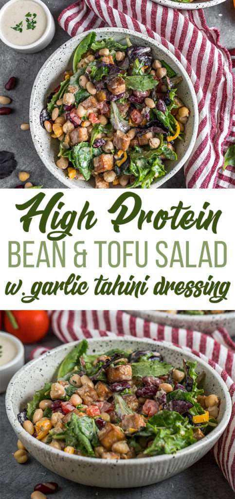 A salad that is high in protein? Count me in! This salad is packed with protein and loaded with 3 different kinds of beans, some crispy tofu, and a big 'ol bunch of fresh greens and veggies. To finish it off, we whipped up a quick and easy tahini garlic dressing that adds the perfect depth of flavor. #salad #protein #highprotein #veganprotein #proteinsalad #lunch #onthego #togo #school #work #lunchbox #bentobox #vegan #entree #dinner