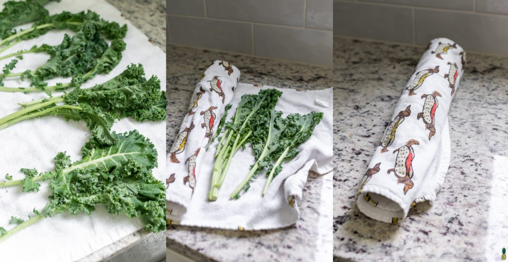 Washed Kale on a towel, wrapped up for the refrigerator. Weiner dog towel. Sweet Simple Vegan