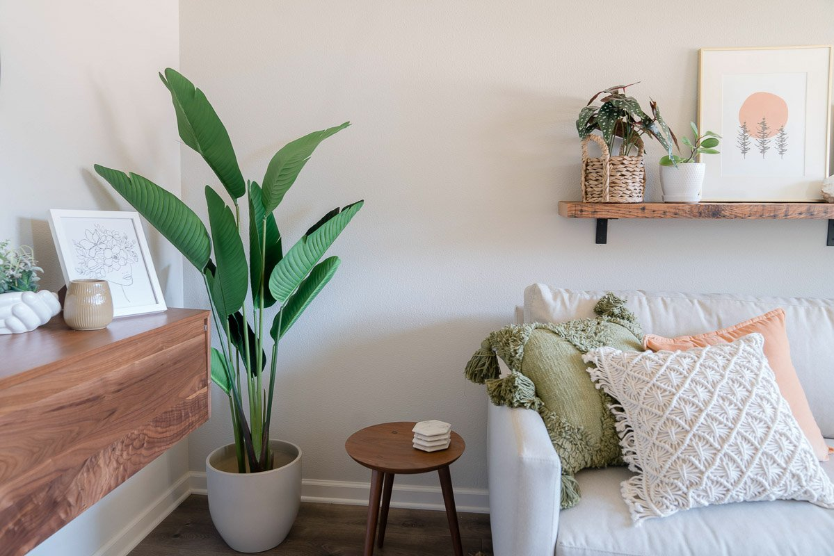 after image of the front of the room with plant, shelf and couch