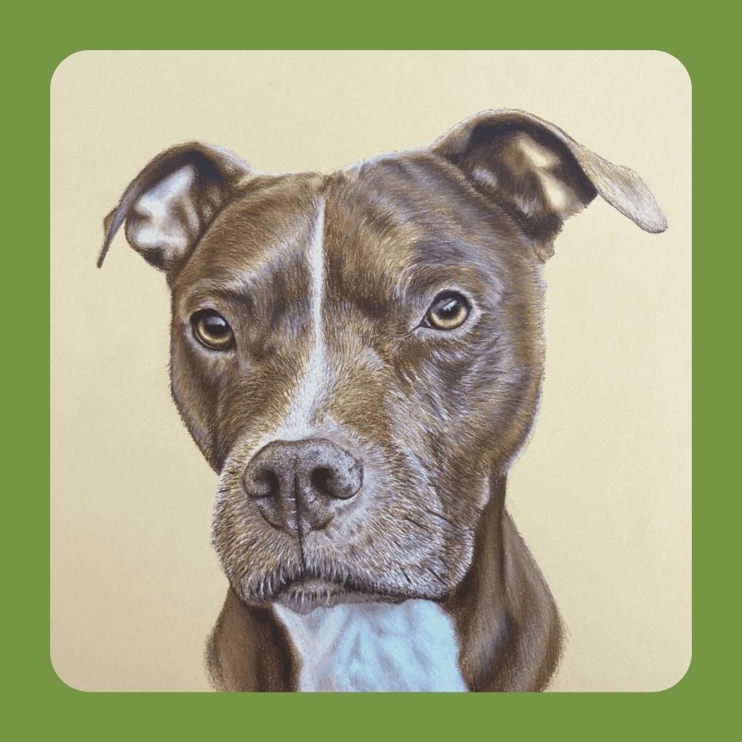 dog illustration from Liz Moretti